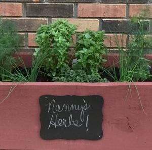 My backdoor herb box
